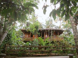 Wooden House - Jungle Escape