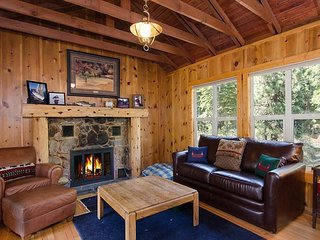 Cabin Fever - 1 bed, 1 bath * fireplace