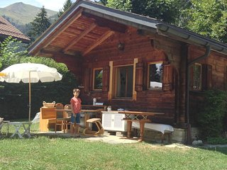Sweet Little Typical Chalet