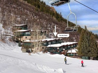 Rare Aspen Mountain Ski In/Out. Incredible Views! Year-Round Heated Pool, Free P