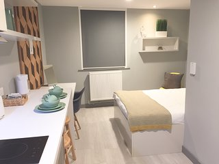 Modern Studio Apartment in City Centre 213