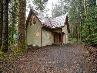 Mt. Baker Lodging Cabin #50 – HOT TUB, FIREPLACE, PETS OK, WIFI, SLEEPS 8!