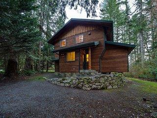 Mt. Baker Lodging Cabin #54 – MT VIEW, BBQ, WIFI, D/W, W/D, SLEEPS-6!