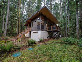 Mt. Baker Lodging Cabin #42 –  HOT TUB, PETS OK, BBQ, W/D, WIFI, SLEEPS-6!