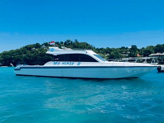 The best motor yacht at bali