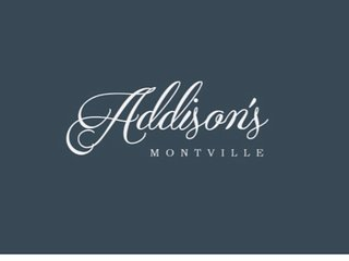 Addison's Montville- Netflix, Pet Friendly and Studio
