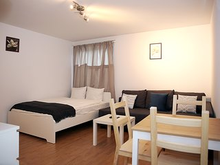 SVH Lucerne - Studio Apartment - Alpha 2