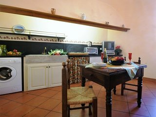 Rinnovato appartamento in rustico di paese - Ap22