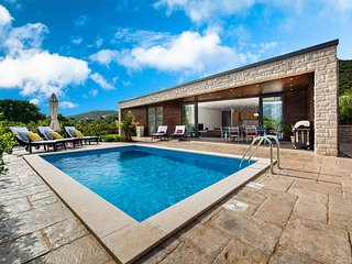 Luxury Villa Veni with Pool