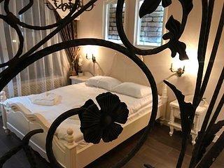 Vila Cochet, vacation rental in Poiana Brasov