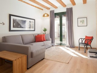 Old Town Luminous Luxury Apartment 1-1
