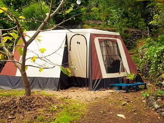 AbbyVille, Romantic Camping in lush Eco Garden