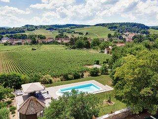Mercurey Chateau Sleeps 16 with Pool - 5049848