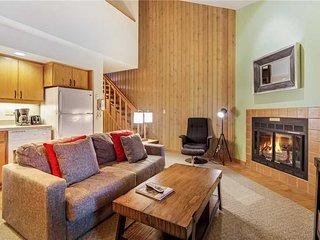 Ski House 251
