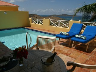 Limetree Villa for 2, Private HEATED Pool, Big Ocean & Buck Island View