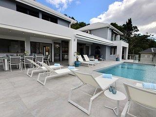 Villa Caouanne: grande piscine à débordement, accès ponton
