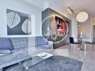 Apex - Fully Furnished luxury Executive Condo King West
