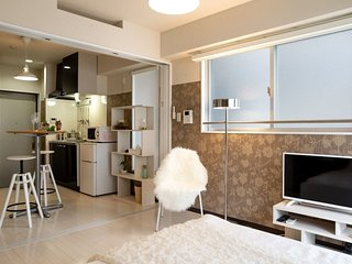 Dotonbori Luxury Apt in Namba NMT29
