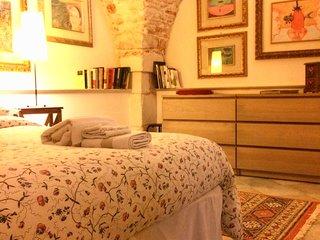 Loft in centro & secret garden-Dimora San Giuliano