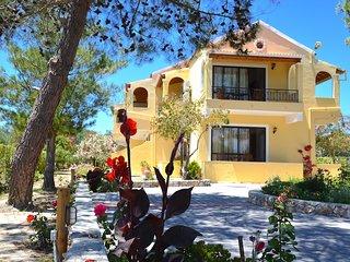Alexandra Apartments Lefkimmi