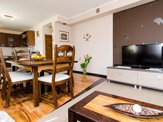 Spacious apartment in the center of Slano with Internet, Air conditioning, Terra