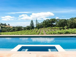 3BR 3BA Vineyard Estate w/ Hot Tub, Heated Pool & Game Room - Minutes to Napa
