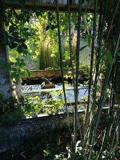 Vue de la terrasse sur le jardin des propriétaires