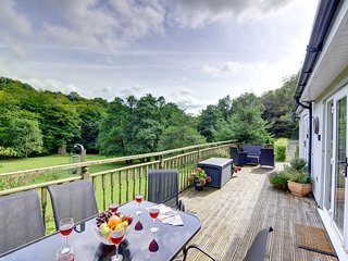 Comfortable apartment with lovely, mature gardens - The Mill at Glynhir, WAW322