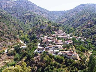 """Imagine Renting this Luxury Villa"" Troodos Mountains Home 119"