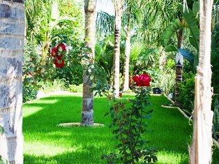Rentiing a Villa with Private Swimming Pool Ayia Napa Villa 74