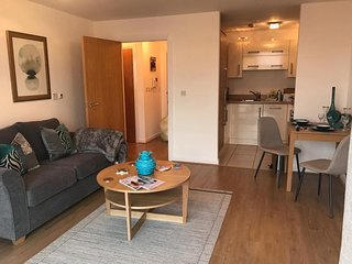Hansen House Cardiff Apartment