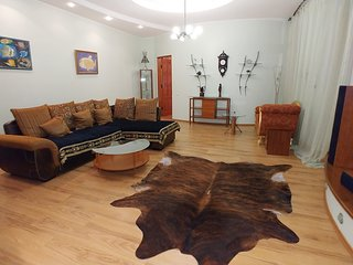 Spacious apartment in the center of Kiev with Internet