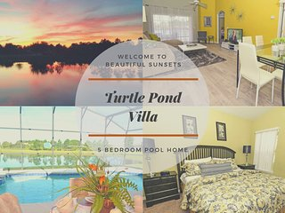 17637WW -Turtle Pond (S)