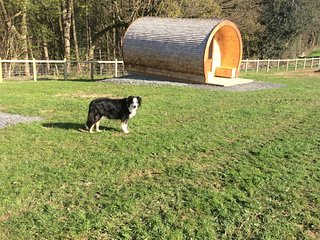 Beech - Glamping pod - Castle Farm Holidays Shropshire