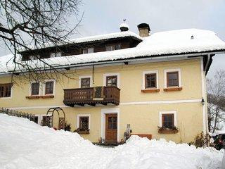 Bauernhof Schobergut (MIC110)