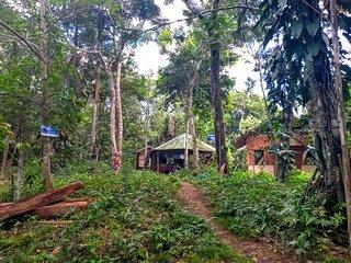 Refugio Samaúma - Detox Urbana - Turismo