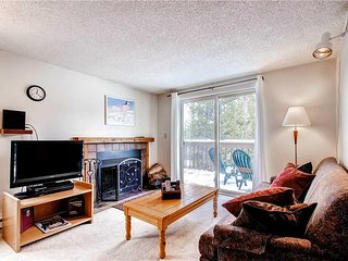 Cute Condo with Wood Fireplace and WiFi, near Shuttle Stop!