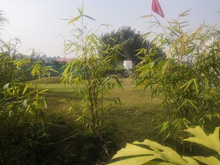 Lemon Grass farmhouse