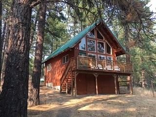 Private Wooded Retreat in a Clean & Sunny Cabin, Great for Kids & Dogs!..