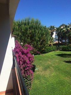 France long term rental in Corsica, San-Nicolao