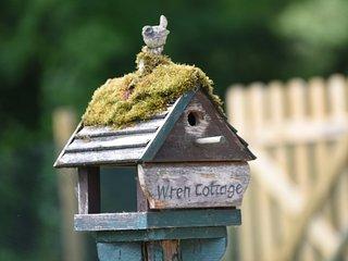Dog-friendly, Wren Cottage, Near Lymington, New Forest