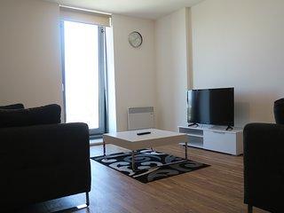 3 Bedroom Apartment (3)