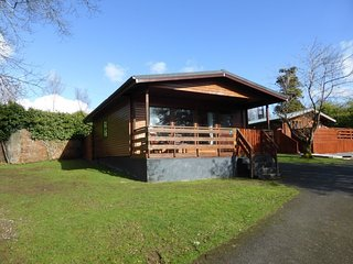 Bluebell Lodge 7 with Hot Tub, Newton Stewart