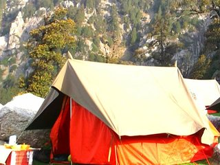 Luxury Camping in Triund near Dhauladhar Ranges & Galu Temple