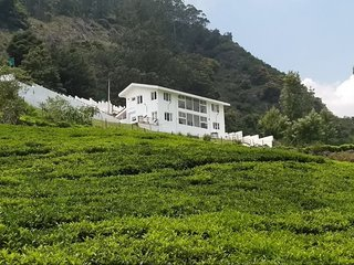 Beautiful Lush Green Homestay In Kotagiri