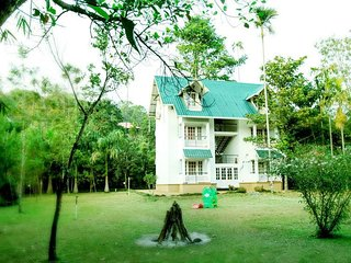 Beautiful Green Surrounding View Homestay