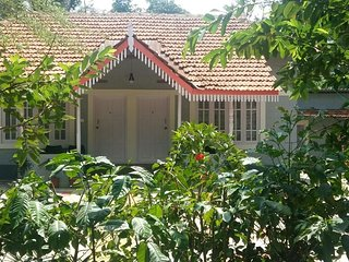 Green Surrounding Cottage In Coorg