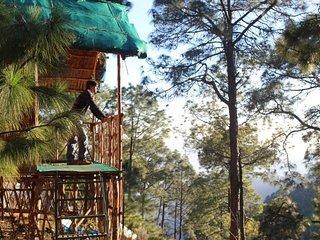 Beautiful View Camp in Kasauli