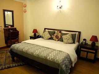 Sparkling 6 Bedroom Villa In Delhi