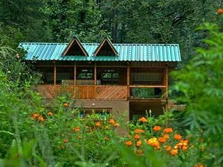 Cozy Single Modern Homestay at Forest In Kullu